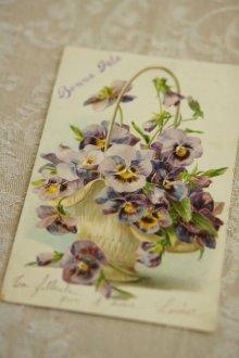 他の写真2: エンボス アンティークポストカード / 花かごに入ったパンジー(花)
